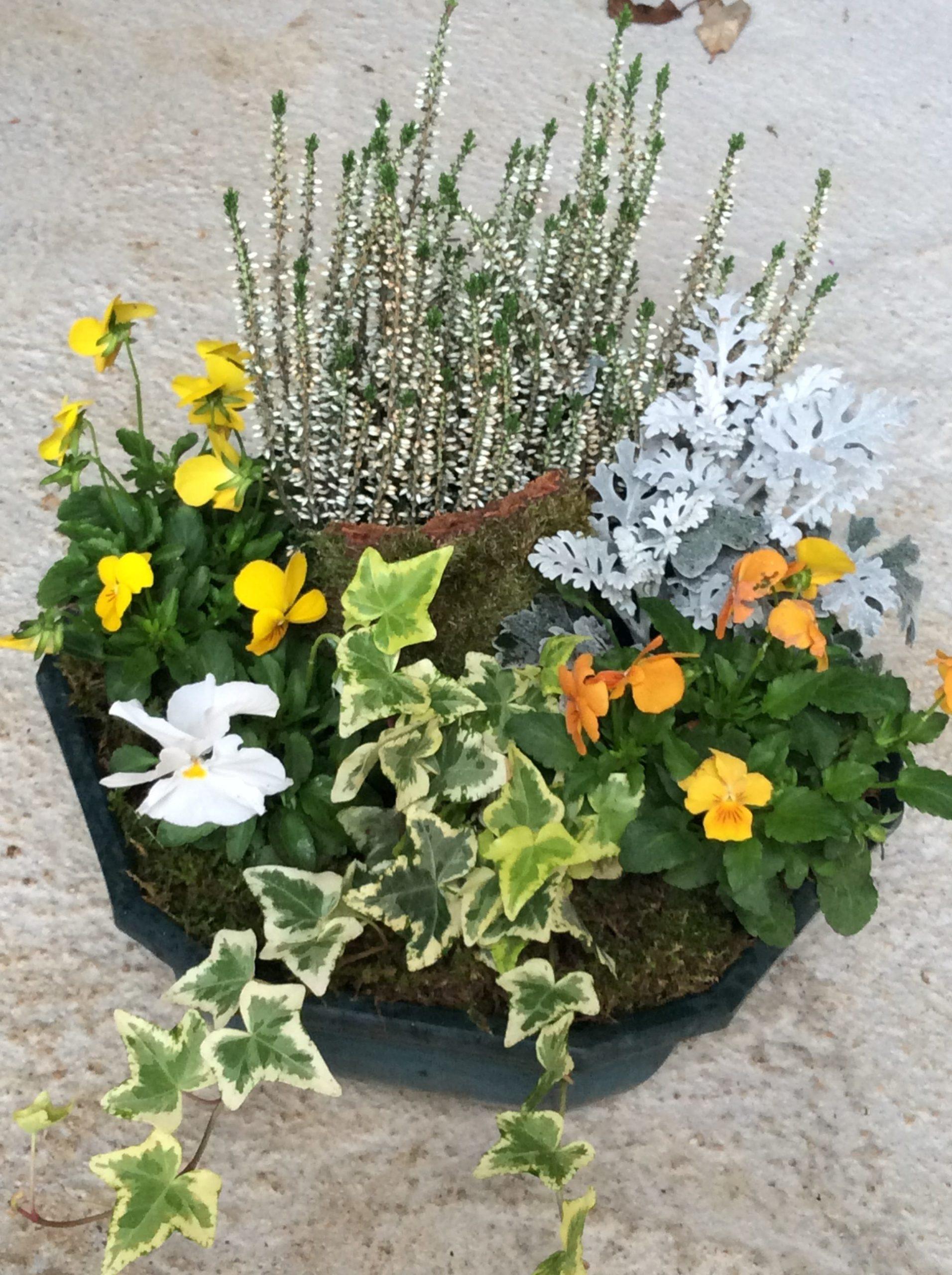 fleurs deuil jaune fleuriste woippy effleurs