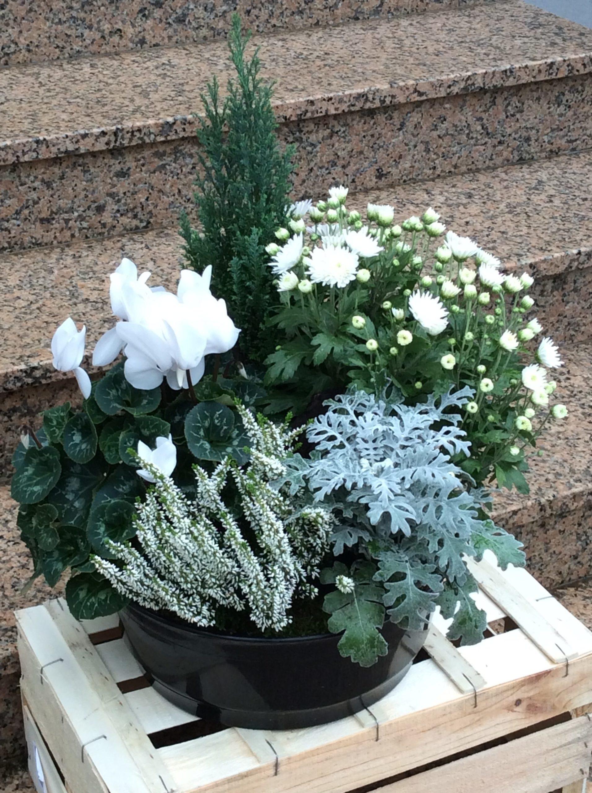 fleurs deuil plantes blanc fleuriste woippy effleurs