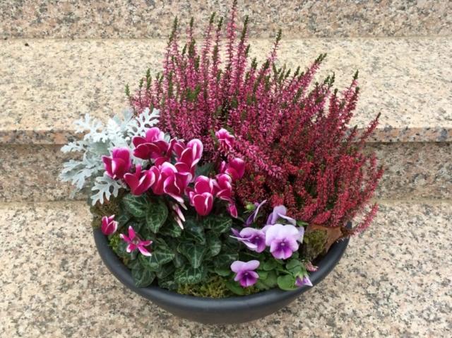 fleurs deuil plantes fleuriste metz effleurs