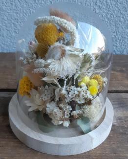 Cloche bois fleurs séchées- Effleurs
