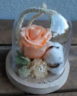Cloche bois fleuri peche- Effleurs
