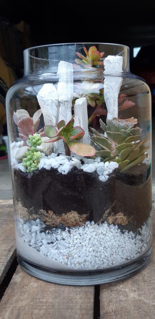 terrarium fleuriste metz