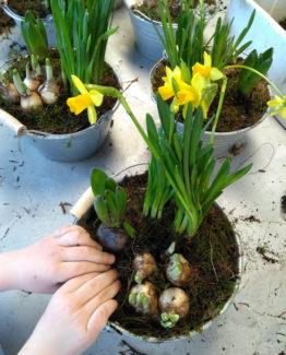 atelier de créations fleurs enfants