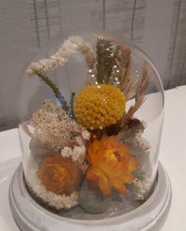 Cloche fleurs séchées champ été - Effleurs