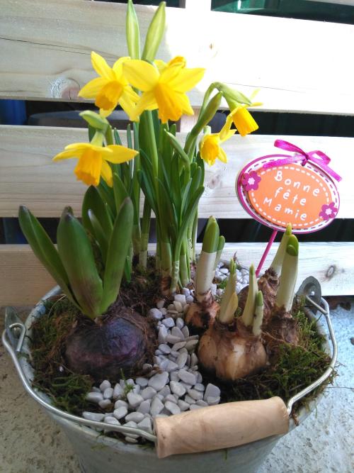 Douceur printemps - Effleurs